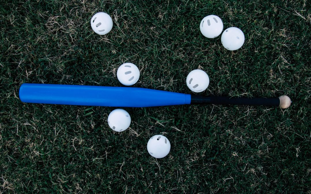 Tee Ball Bat Buyer's Guide